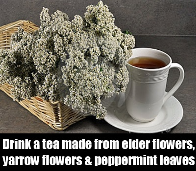 yarrow flower tea