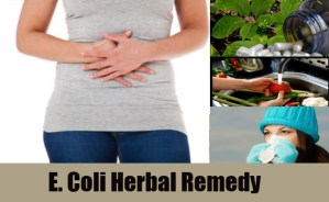 E. Coli Herbal Remedy