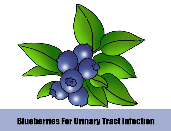 Blueberries For Urinary Tract Infection