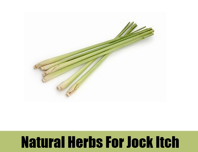 Natural-Herbs-To-Cure-Jock-Itch