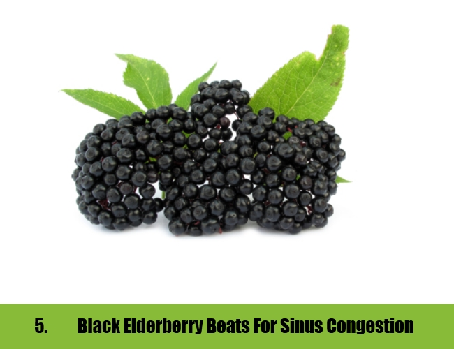 Black Elderberry Beats