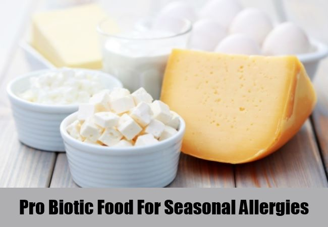 Pro Biotic Food For Seasonal Allergies
