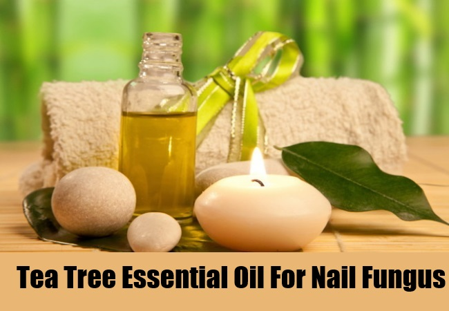 Tea Tree Essential Oil For Nail Fungus