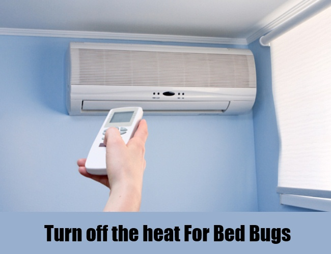 Turn off the heat For Bed Bugs