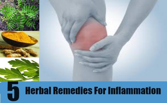 5 Herbal Remedies For Inflammation
