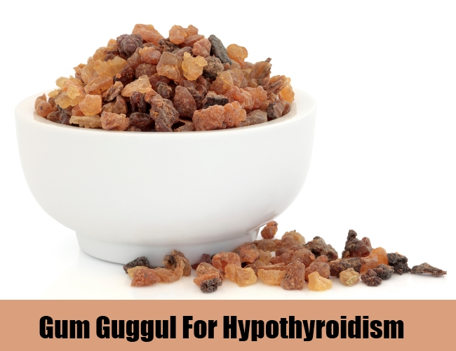 Gum Guggul For Hypothyroidism