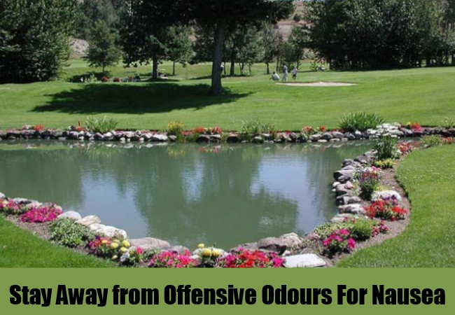 Stay Away from Offensive Odours