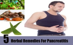 Herbal Remedies For Pancreatitis