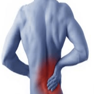 Pain In The Muscle Joint