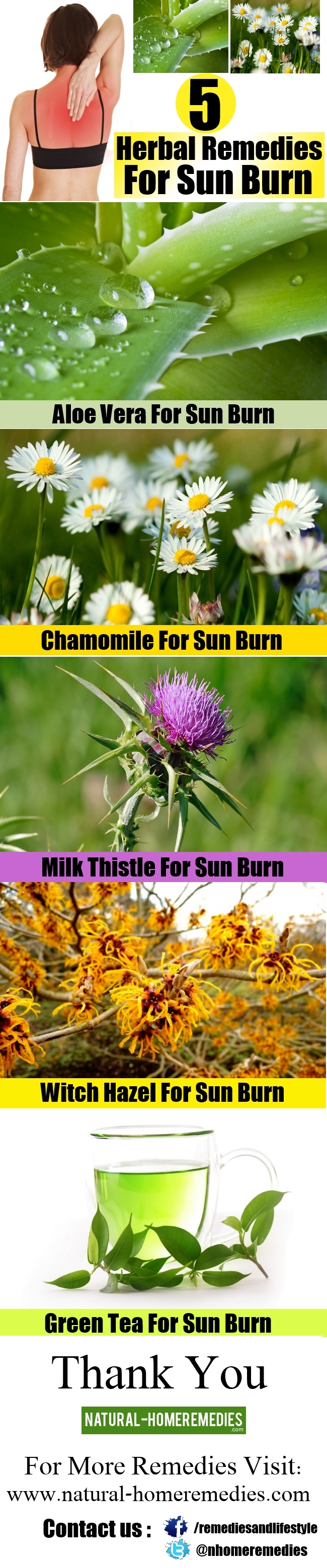 5 Major Herbal Remedies For Sun Burn