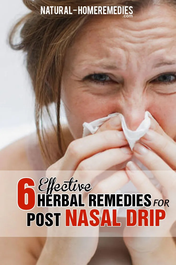 6-effective-herbal-remedies-for-post-nasal-drip