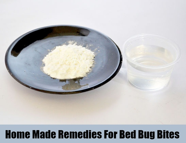 Home Made Remedies For Bed Bug Bites