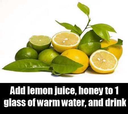 Lemon Concoctions