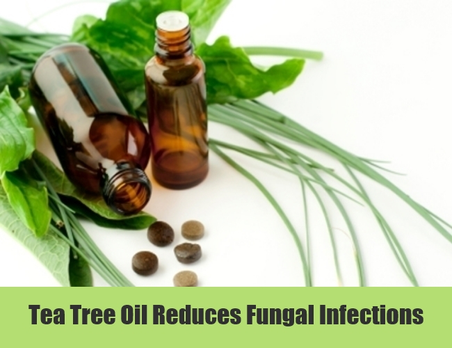 Tea Tree Oil Reduces Fungal Infections