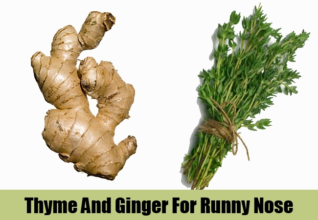 Thyme And Ginger