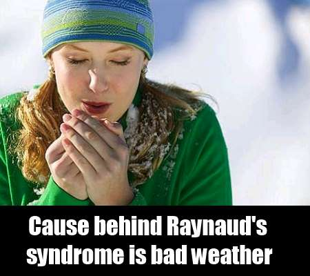What Are The Possible Causes Of  Raynaud's Syndrome