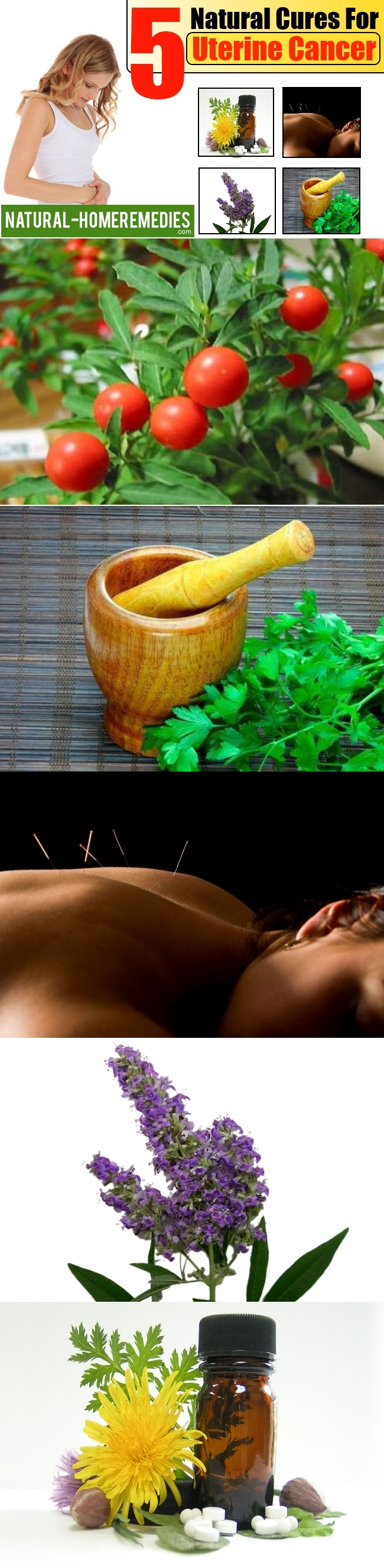 5 Natural Cures For Uterine Cancer