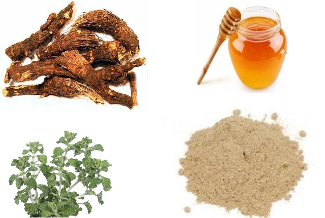 Osha Root and Horehound Infusion for Lung Cleansing