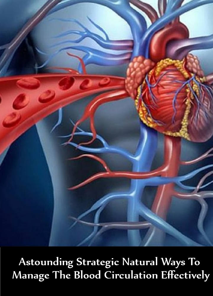 Astounding Strategic Natural Ways To Manage The Blood Circulation Effectively