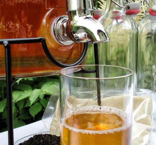 Alkoholfreier Kombucha: Geht das? – 6 Strategien für einen alkoholfreien Kombucha - Kombucha Getränk