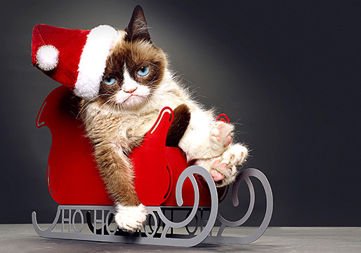 Grumpy Cat's Worst Christmas
