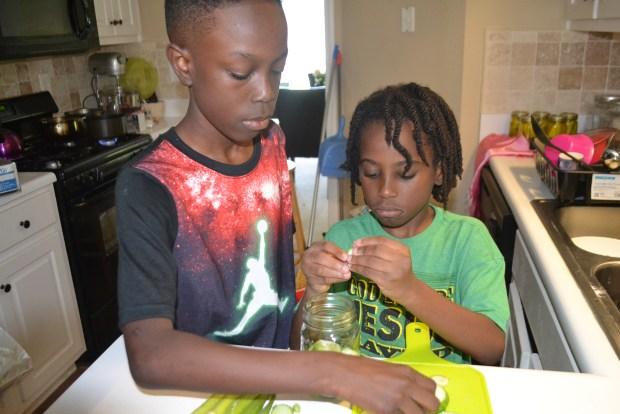 Naturalbabydol, Canning Pickles