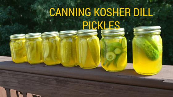 Pickling Cucumbers, Naturalbabydol