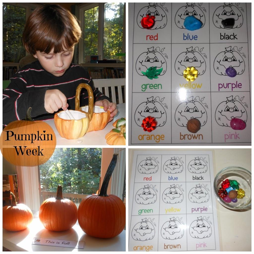 Exploring Pumpkins In Autumn