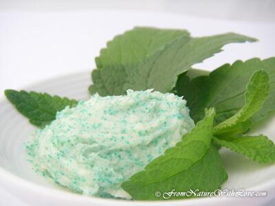 Mint Twist Exfoliating Lip Scrub