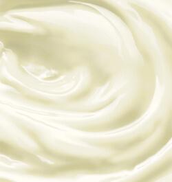 Organic Whole Milk Powder