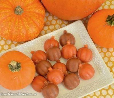 Pumpkin Spice Wax Tarts