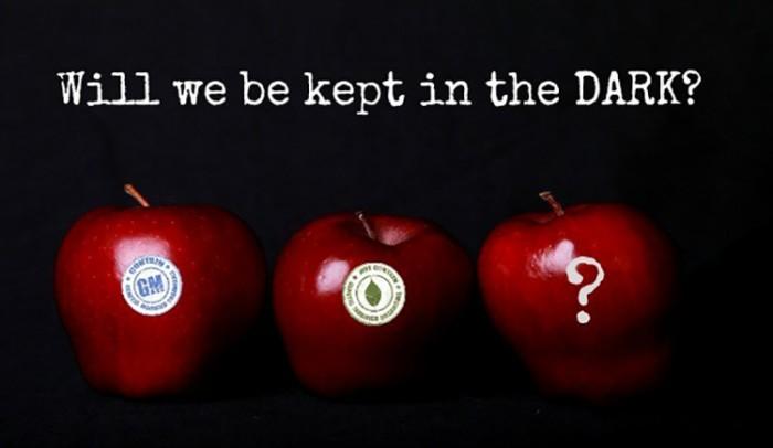 apples-GMO-DARK-Act-620x360-1-700x406