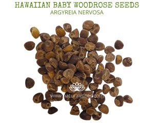 Natural Ether Website Images HAWAIIAN BABY WOODROSE SEEDS 2