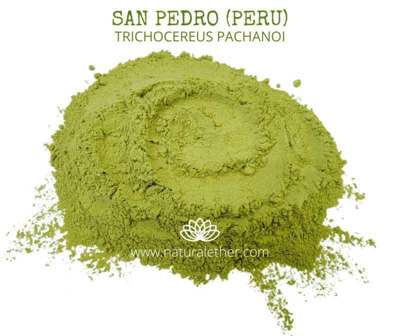 Natural Ether Website Images SAN PEDRO (PERU) 2