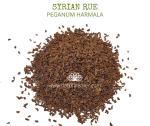 Natural Ether Website Images SYRIAN RUE 2