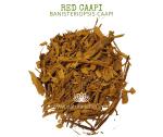 Natural Ether Website Images RED CAAPI 2