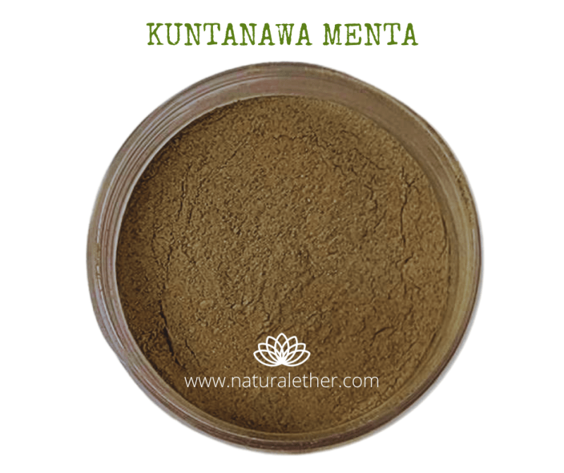 Natural Ether Website Images KUNTANAWA MENTA 2 (1)