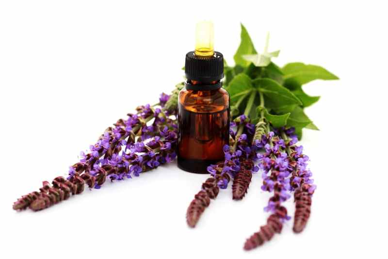 13 Amazing Benefits of Clary sage Oil