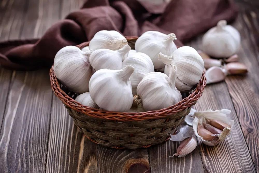 Benefícios para a saúde do alho