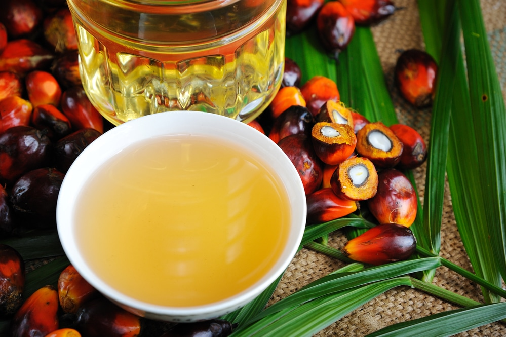 Benefícios surpreendentes para a saúde do óleo de palma