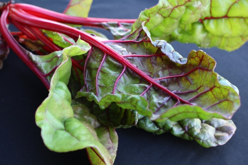 11 Amazing Health Benefits of Swiss Chard
