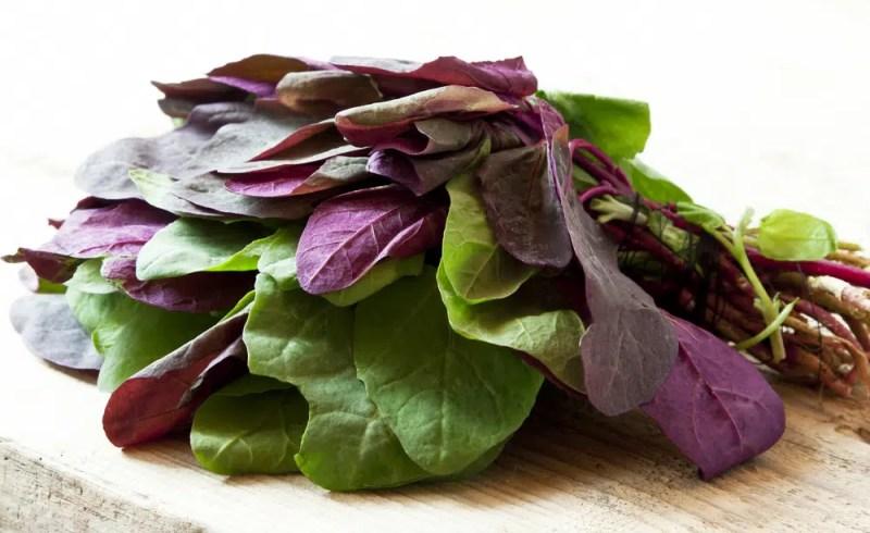 11 Amazing Health Benefits of Orach