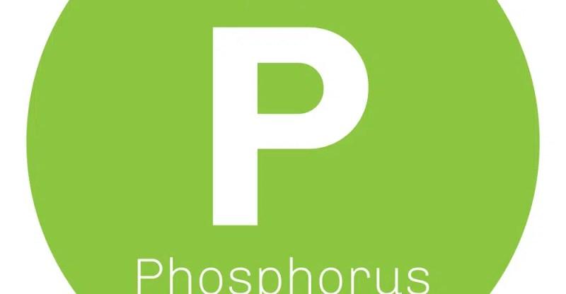 Phosphorus benefits