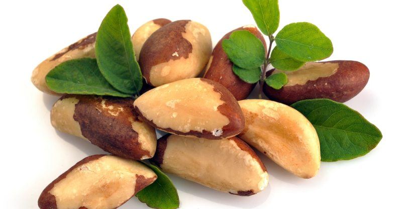 13 Surprising Health Benefits Of Brazil Nuts