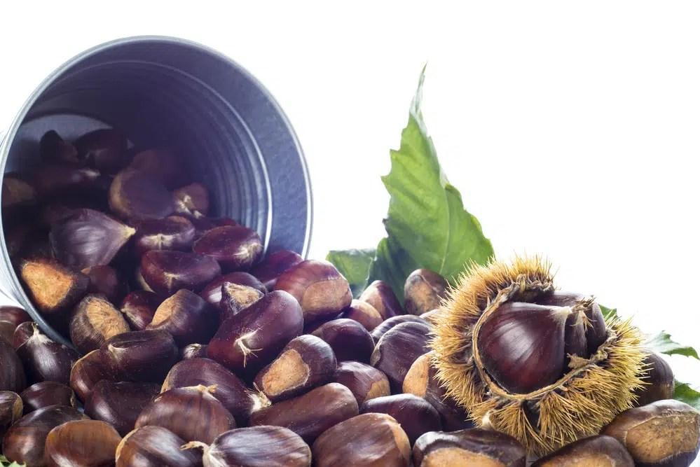 Benefícios das castanhas