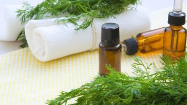 11 Amazing Health Benefits of Dill Essential Oil