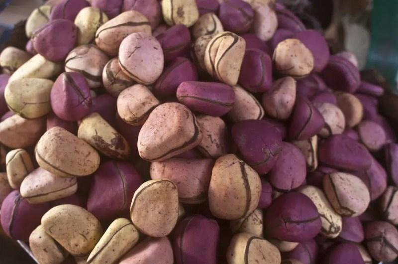 11 Amazing Health Benefits of Kola Nut