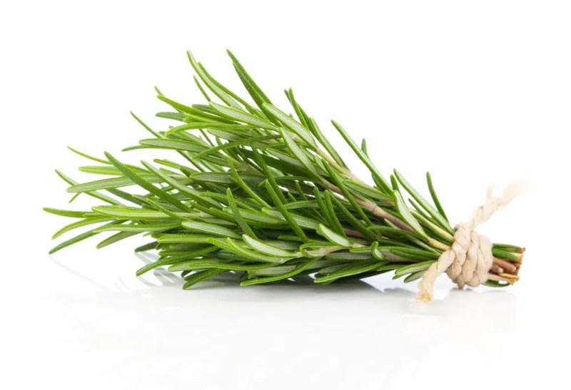 11 Amazing Health Benefits of Rosemary