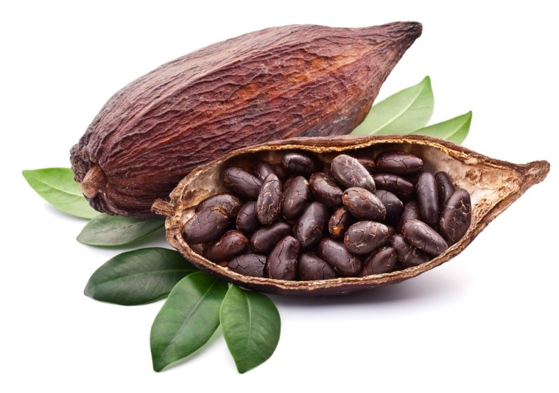 13 Impressive Health Benefits of Cocoa