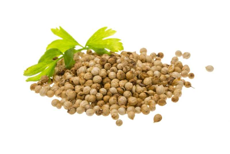 11 Amazing Health Benefits of Coriander Seeds